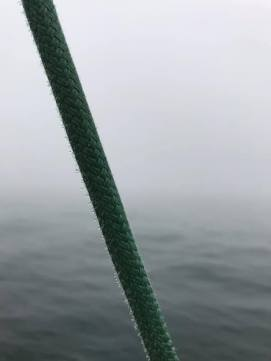 7 10 20 Silverlining morning sail dew