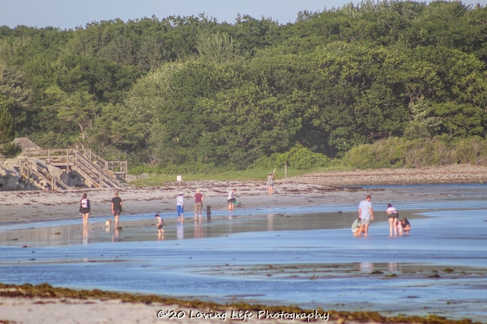 7 11 20 Goose Rock Beach Kennebunkport ME...perhaps (2 of 41)