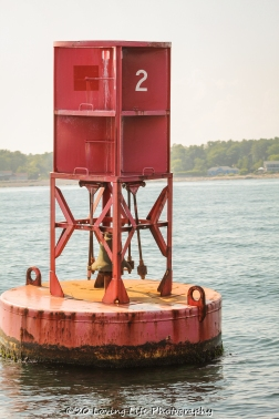 7 9 20 Buoys & Birdhouses visiting Perkins Cove (22 of 39)