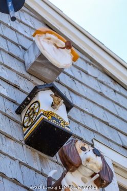 7 9 20 Buoys & Birdhouses visiting Perkins Cove (4 of 39)