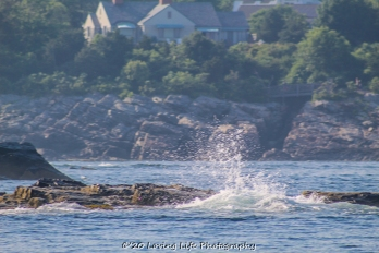 7 9 20 Nubble Lighthouse Tour with Finestkind (134 of 143)